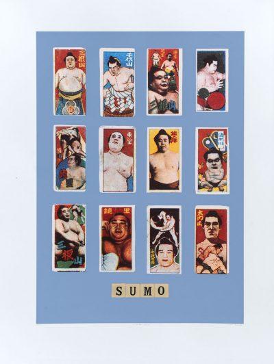 Peter Blake S Sumo